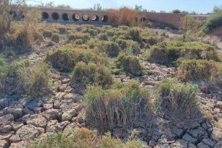 تهدیدهای زیستی خوزستان و لزوم توجه سریع به چند نکته صریح