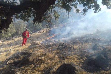 آتش سوزی مراتع و جنگلهای اندیکا مهار شد
