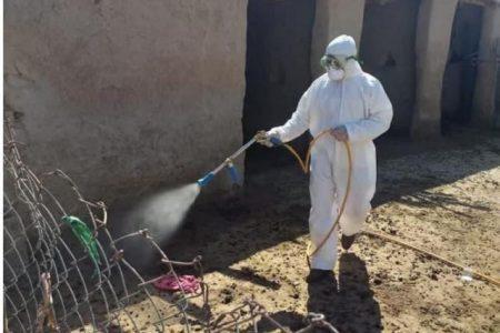 تب خونریزی دهنده ویروسی؛ بیماری کشنده جدید در عراق